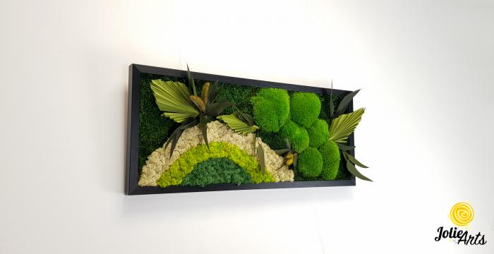 Model Soare cu alb, 30 x 70 cm, rama neagra, tablou licheni, Jolie Arts, www.tablouriculicheni.ro-2 [3]