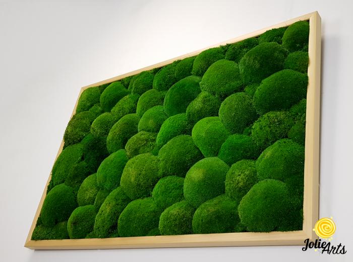 Tablou muschi bombati naturali stabilizati, dimensiune 60 x 100 cm, rama culoare natur, Jolie Arts, www.tablouriculicheni.ro-3 [5]