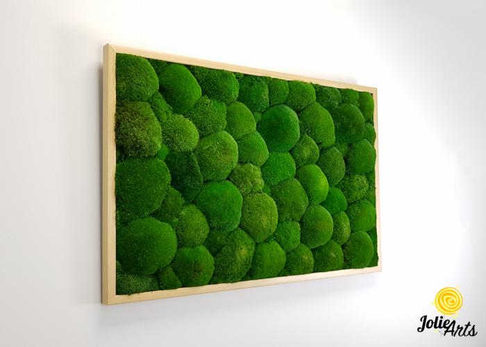 Tablou muschi bombati naturali stabilizati, dimensiune 60 x 100 cm, rama culoare natur, Jolie Arts, www.tablouriculicheni.ro-3 [3]