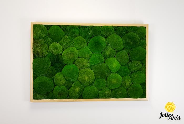 Tablou muschi bombati naturali stabilizati, dimensiune 60 x 100 cm, rama culoare natur, Jolie Arts, www.tablouriculicheni.ro-3 [2]
