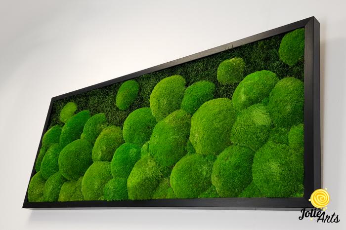 Tablou muschi bombati si plati naturali stabilizati, Jolie Arts, dimensiune 40 x 100 cm, rama neagra, www.tablouriculicheni.ro-2 [4]