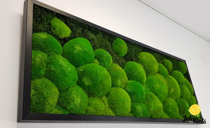 Tablou muschi bombati si plati naturali stabilizati, Jolie Arts, dimensiune 40 x 100 cm, rama neagra, www.tablouriculicheni.ro-2 [3]