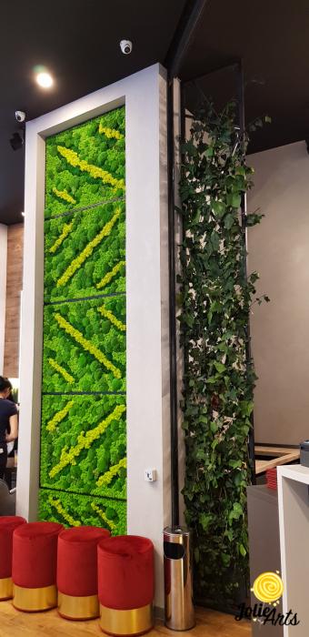 Panouri decorative cafenea, licheni, muschi bombati, plante naturale stabilizate [4]