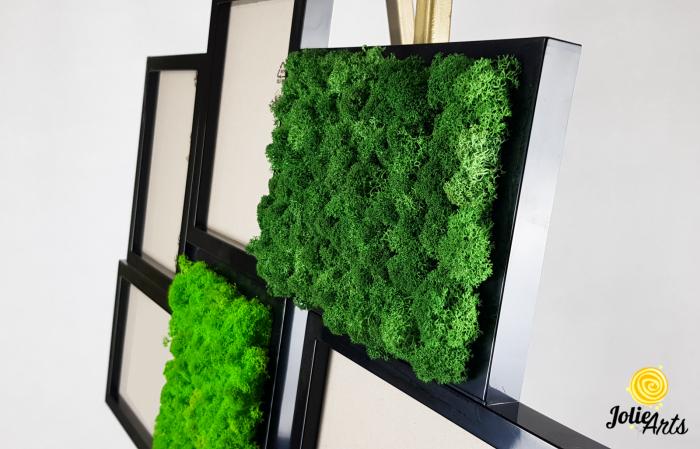 Rama foto decorata cu licheni naturali stabilizati Jolie Arts [4]