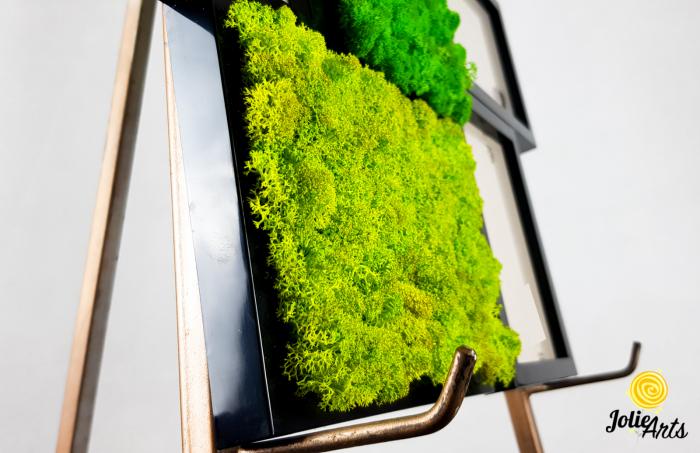 Rama foto decorata cu licheni naturali stabilizati Jolie Arts [2]