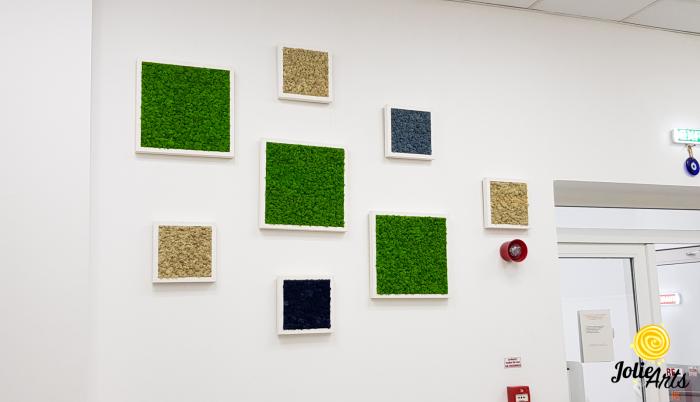 Set 8 tablouri decorate cu licheni naturali stabilizati [1]