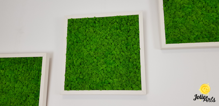 Set 3 tablouri cu licheni naturali stabilizati Jolie Arts, dimensiune 40 x 40 cm [1]
