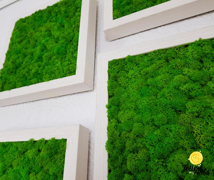 Set 4 tablouri cu licheni naturali stabilizati Jolie Arts [3]