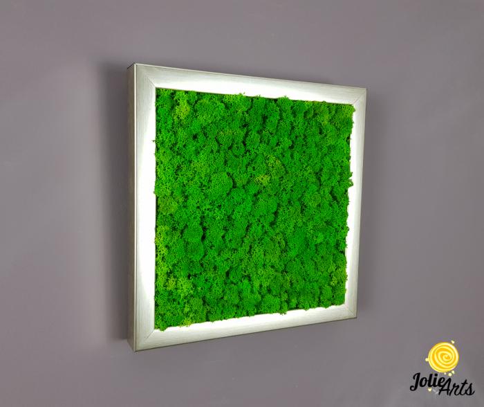 Set 4 tablouri cu licheni naturali stabilizati Jolie Arts [6]
