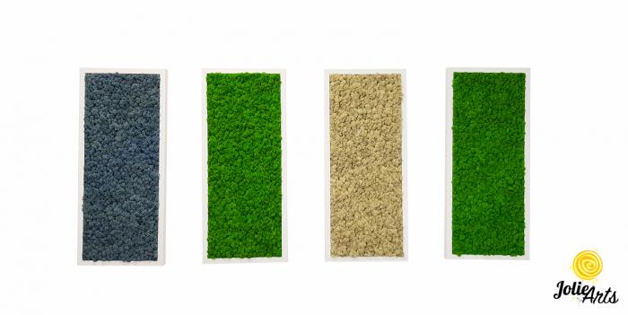 Set 4 tablouri cu licheni naturali stabilizati, dimensiune 30 x 70 cm [0]