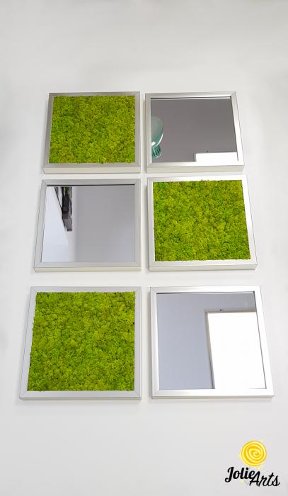 Set tablouri cu licheni Spring Green / Oglinzi [3]