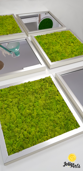 Set tablouri cu licheni Spring Green / Oglinzi [4]
