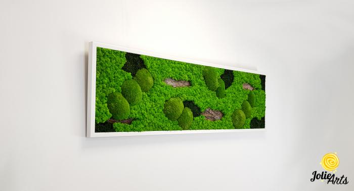 Tablou cu licheni, muschi si elemente naturale stabilizate, Model Scoarta [1]