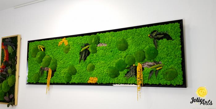 Tablou cu licheni, muschi si plante naturale stabilizate, Jolie Arts, model personalizat [1]