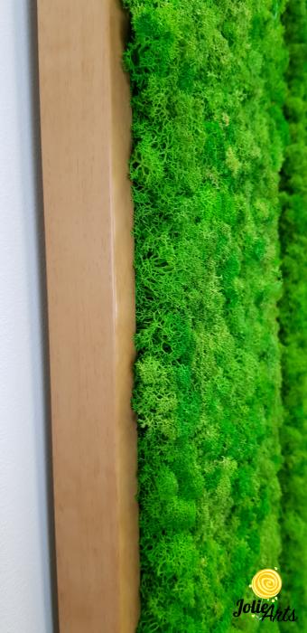 Tablou cu licheni naturali stabilizati, culoare Grass Green Light [7]