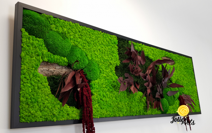 Tablou licheni, muschi si plante naturale stabilizate, Model Amaranthus Rosu, 30 x 70 cm, rama neagra, Jolie Arts, www.tablouriculicheni.ro-2 [3]