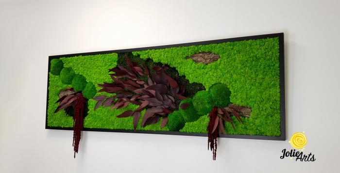 Tablou licheni, muschi si plante naturale stabilizate, Model Amaranthus Rosu, 30 x 70 cm, rama neagra, Jolie Arts, www.tablouriculicheni.ro-2 [1]