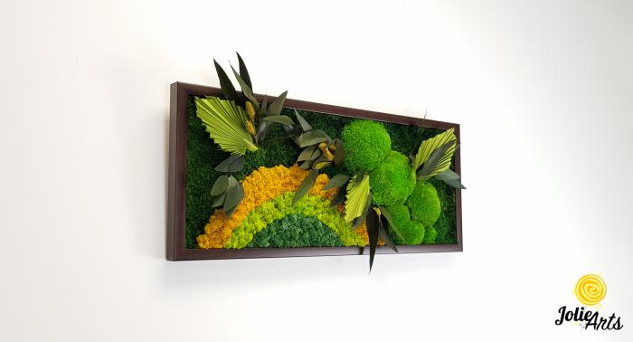 Model Soare, tablou licheni, muschi si plante naturale stabilizate, 30 x 70 cm, rama de culoare maro inchis, Jolie Arts, www.tablouriculicheni.ro-2 [3]