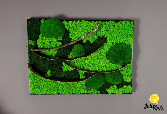 Tablou licheni, muschi bombati si elemente naturale stabilizate Jolie Arts, dimensiune 50 x 70 cm [2]