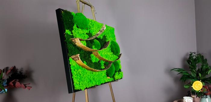 Tablou licheni, muschi bombati si elemente naturale stabilizate Jolie Arts, dimensiune 50 x 70 cm [4]