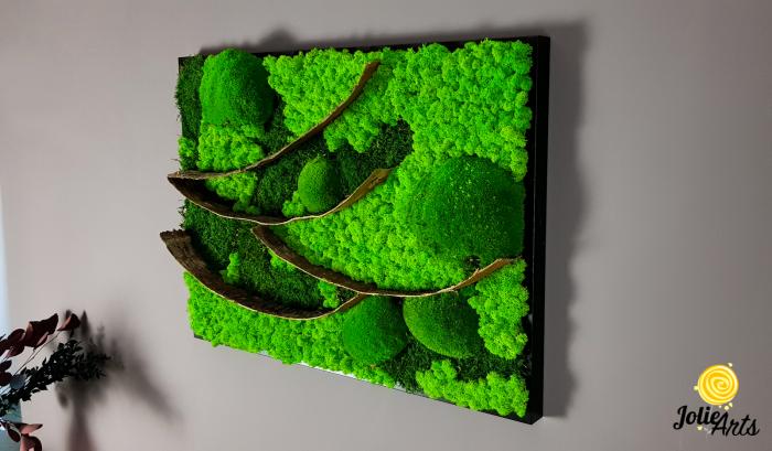 Tablou licheni, muschi bombati si elemente naturale stabilizate Jolie Arts, dimensiune 50 x 70 cm [5]
