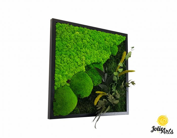 Tablou licheni, muschi bombati si plante naturale stabilizate Jolie Arts, Model Clarice [0]