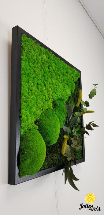 Tablou licheni, muschi bombati si plante naturale stabilizate Jolie Arts, Model Clarice [2]