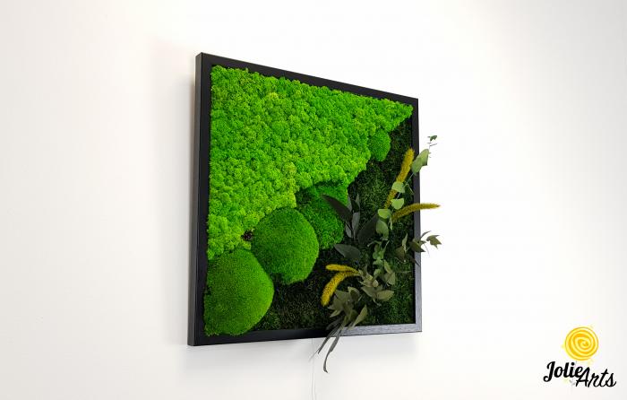 Tablou licheni, muschi bombati si plante naturale stabilizate Jolie Arts, Model Clarice [5]