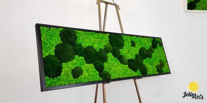 Tablou licheni, muschi bombati verde inchis, Jolie Arts [2]