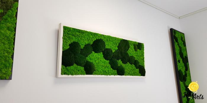 Tablou licheni, muschi naturali de padure stabilizati verde inchis, Jolie Arts [2]