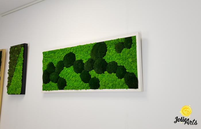 Tablou licheni, muschi naturali de padure stabilizati verde inchis, Jolie Arts [1]