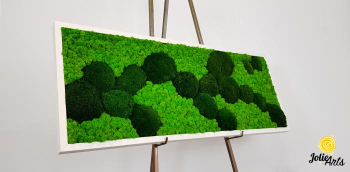 Tablou licheni, muschi naturali de padure stabilizati verde inchis, Jolie Arts [5]