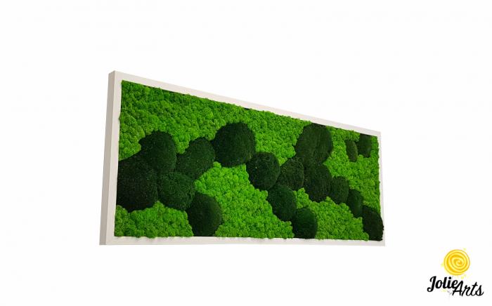 Tablou licheni, muschi naturali de padure stabilizati verde inchis, Jolie Arts [0]