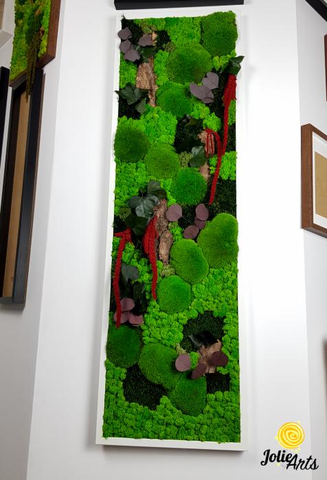 Tablou licheni, muschi, plante naturale stabilizate Jolie Arts [1]
