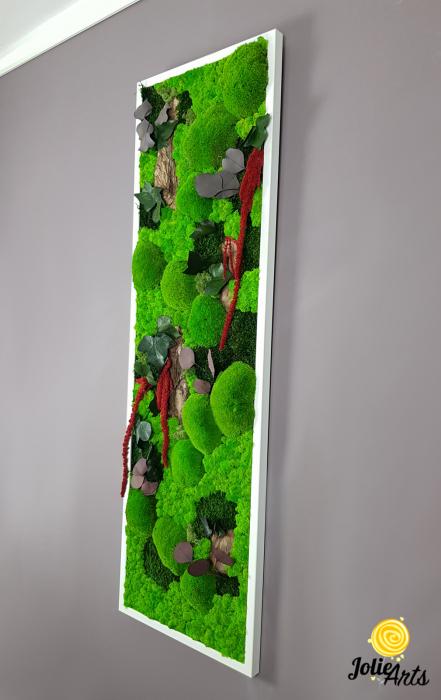 Tablou licheni, muschi, plante naturale stabilizate Jolie Arts [6]