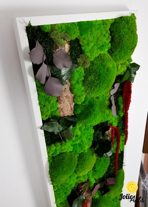 Tablou licheni, muschi, plante naturale stabilizate Jolie Arts [3]