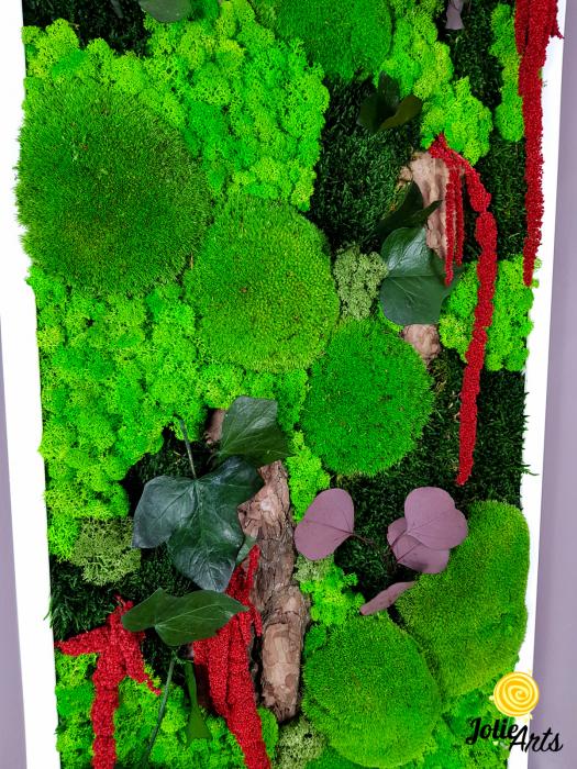 Tablou licheni, muschi, plante naturale stabilizate Jolie Arts [7]