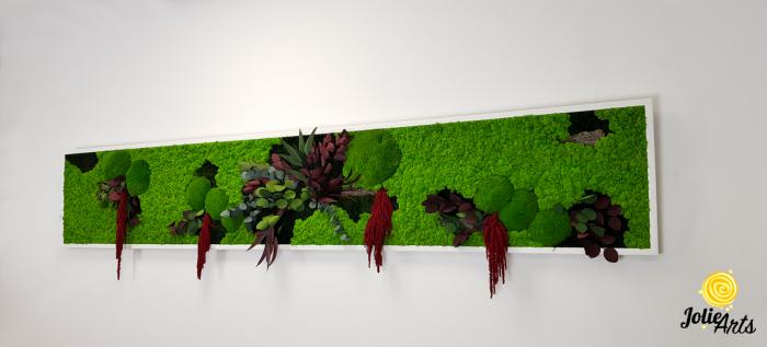 Tablou licheni, muschi si plante naturale stabilizate, Jolie Arts, Model Amaranthus Rosu [2]