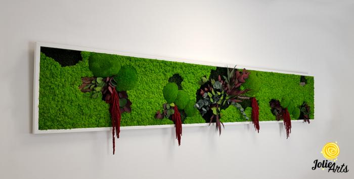 Tablou licheni, muschi si plante naturale stabilizate, Jolie Arts, Model Amaranthus Rosu [1]