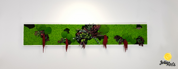 Tablou licheni, muschi si plante naturale stabilizate, Jolie Arts, Model Amaranthus Rosu [3]