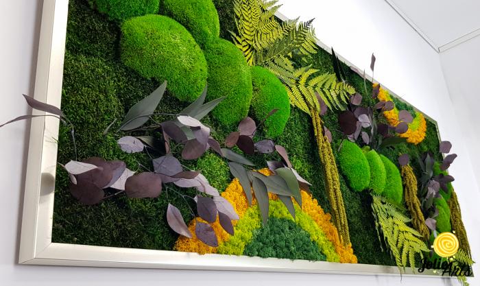 Tablou licheni, muschi si plante naturale stabilizate, Model Curcubeu cu galben, dimensiune 60 x 180, Jolie Arts, www.tablouriculicheni.ro-3 [3]