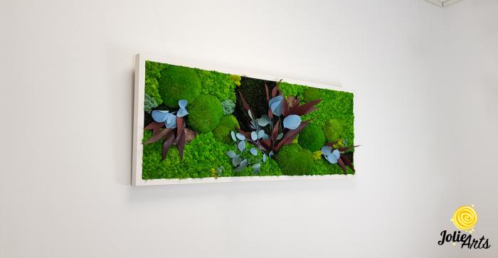 Tablou licheni, muschi si plante naturale stabilizate Jolie Arts, model Ilona [1]