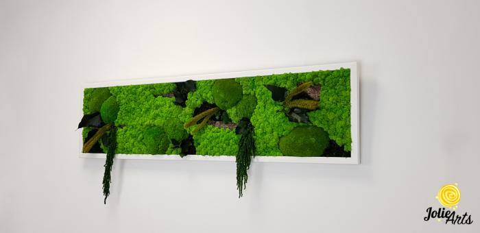 Tablou licheni, muschi si plante naturale stabilizate, Model Green Amaranthus, rama alba, dimensiune 25 x 100 cm, Jolie Arts, www.tablouriculicheni.ro-2 [1]