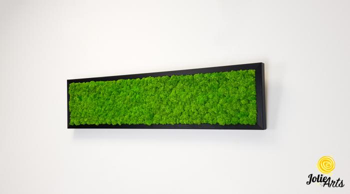 Tablou licheni naturali stabilizati, culoare verde deschis, 25 x 100 cm, Jolie Arts, www.tablouriculicheni.ro-3 [1]