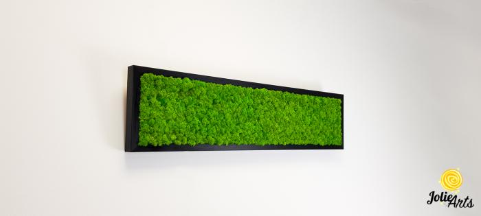 Tablou licheni naturali stabilizati, culoare verde deschis, 25 x 100 cm, Jolie Arts, www.tablouriculicheni.ro-3 [3]