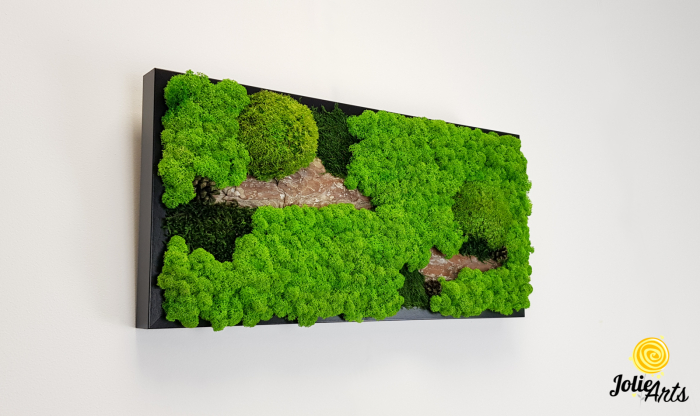 Tablou licheni naturali, muschi bombati, Jolie Arts, Model Scoarta [3]