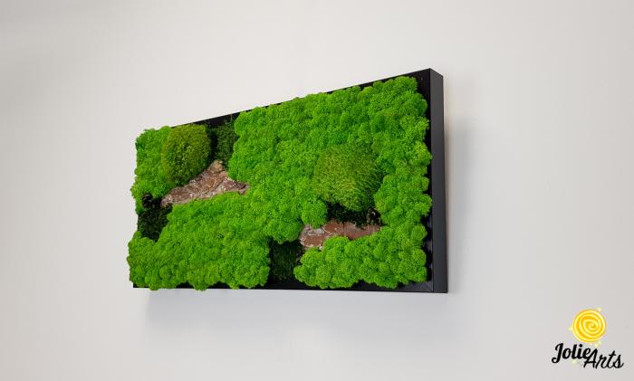 Tablou licheni naturali, muschi bombati, Jolie Arts, Model Scoarta [1]