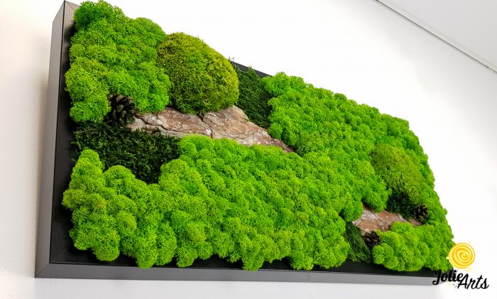 Tablou licheni naturali, muschi bombati, Jolie Arts, Model Scoarta [4]