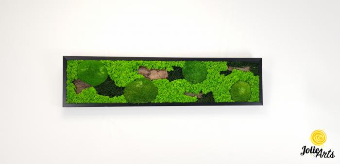 Model Scoarta: muschi de padure, scoarta pin si licheni stabilizati. [2]