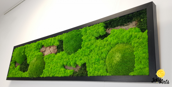 Model Scoarta: muschi de padure, scoarta pin si licheni stabilizati. [5]